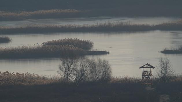 Un orizont nou. Inaugurarea foișorului de observații ornitologice în Parcul Natural Văcărești