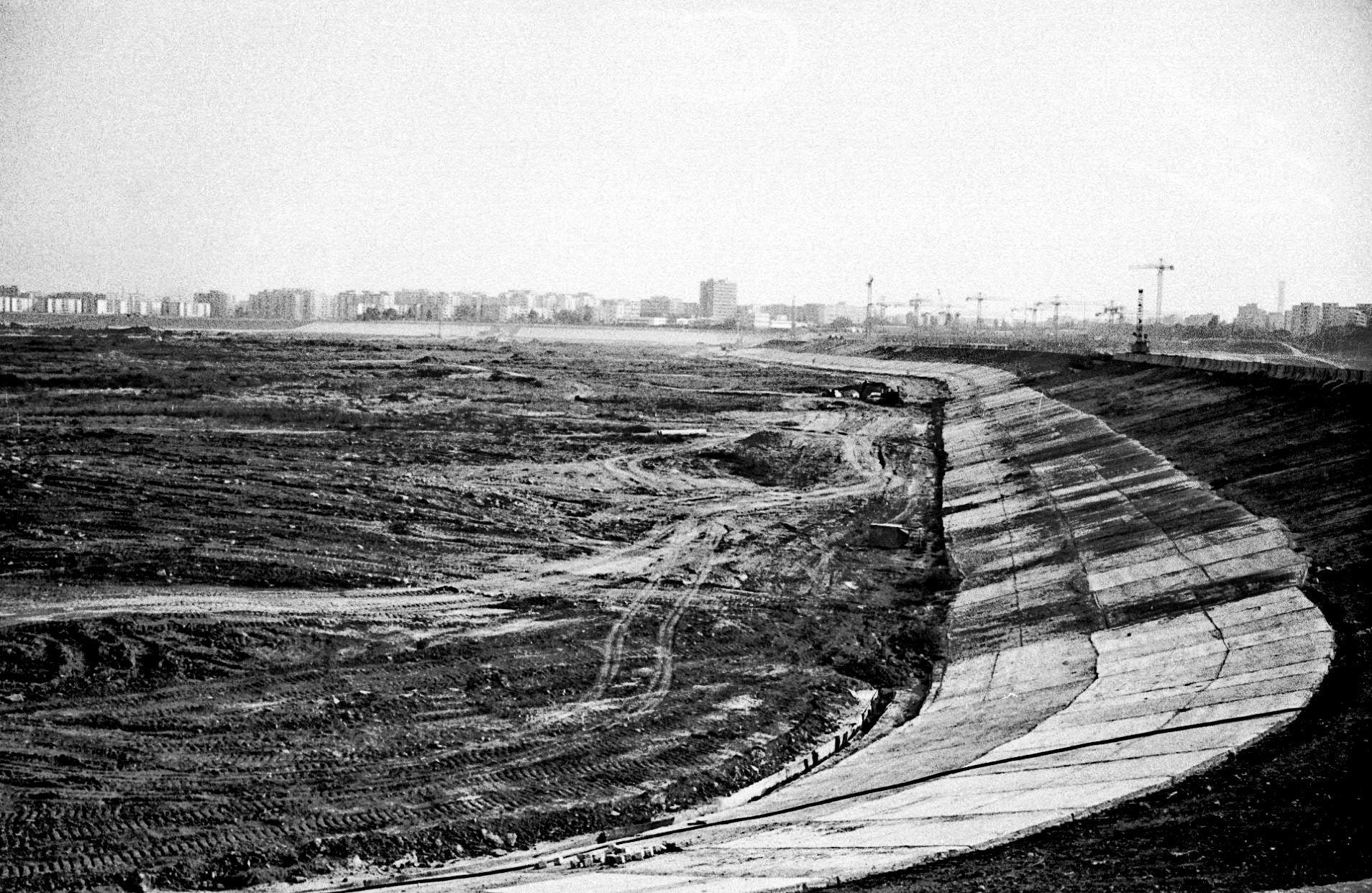 andrei-birsan-vacaresti-1989.jpg