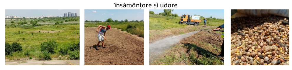 insamantare-si-udare-canva.png