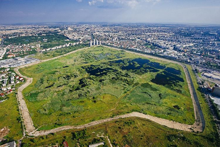 Biodiversitate. Orașe. UE.