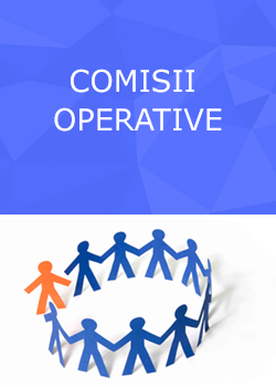 comisii_cooperative.png
